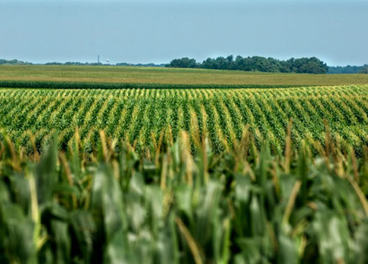 Mid Iowa Growth Partnership, Iowa, USA (2010)